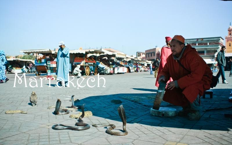 Marrakech3-15b