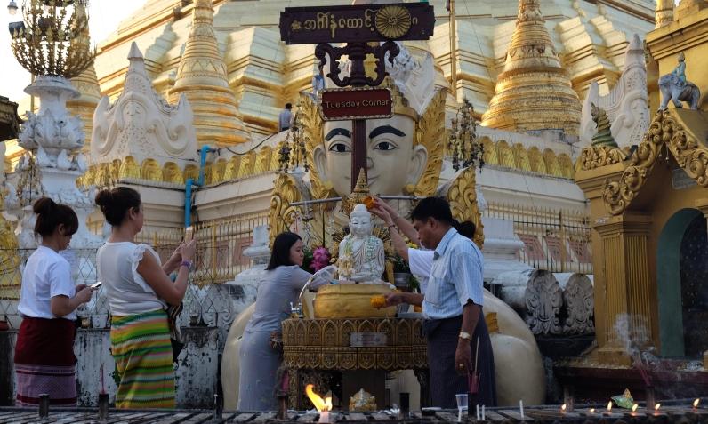 Pagoda-24