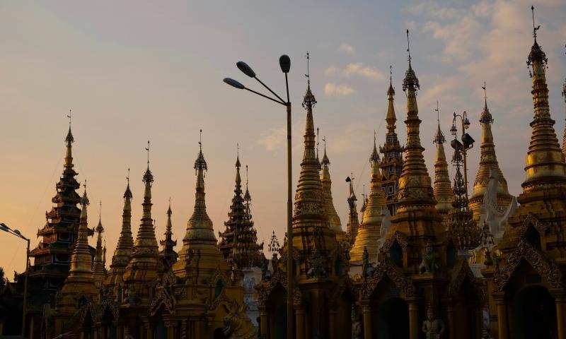 Pagoda-29