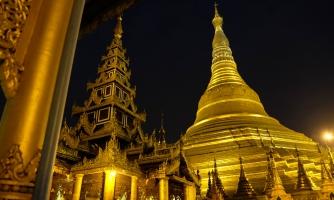 Pagoda-33